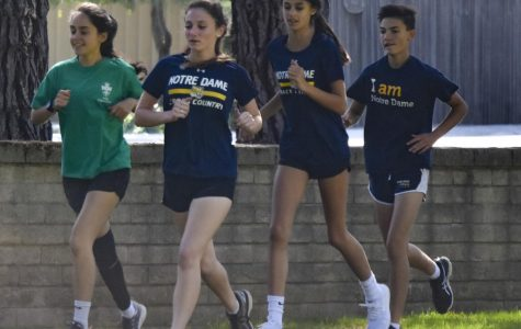 Cross country runners spring into action