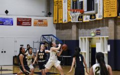 Athlete spotlight: Basketball player Talia Bertana