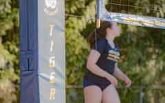 Athletics Department adds Beach Volleyball program