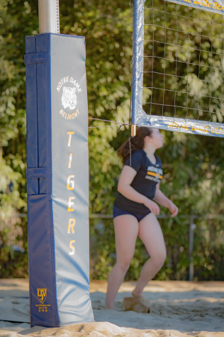 Athletics Department adds Beach Volleyball program
