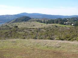 The Crystal Springs Cross Country course is a scenic stretch of land in Belmont, California.