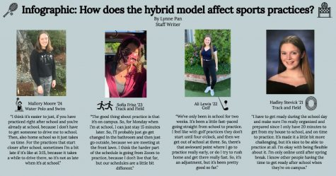 Infographic: How does the hybrid model affect sports practices?