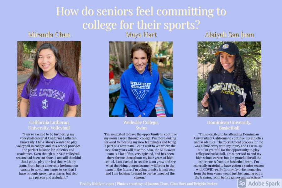 Infographic+of+NDB+seniors+committing+to+colleges+for+their+sports.