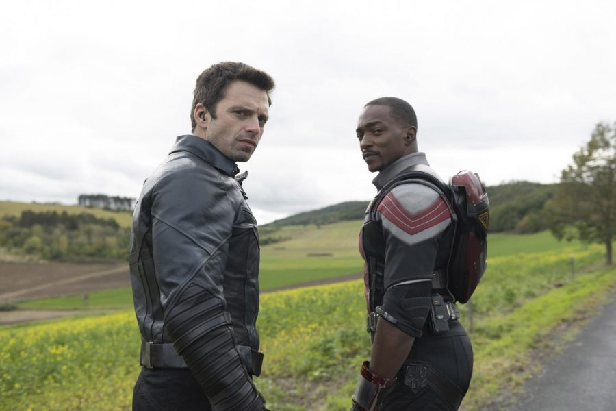 Cast of The Falcon and Winter Soldier.
